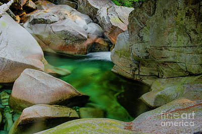 Photograph - the Emerald Stream by Rod Wiens