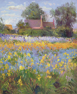 The Enclosed Cottages In The Iris Field Print by Timothy Easton