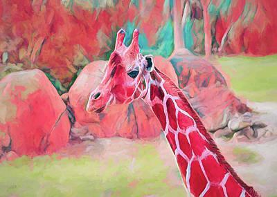 Photograph - The Endearing Giraffe by John M Bailey