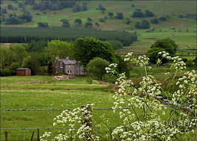 Photograph - The English Farm by Liz Alderdice