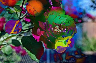 Photograph - Couleur by Thom Zehrfeld