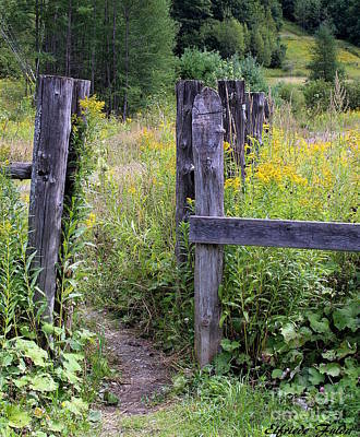 Photograph - The Entrance by Elfriede Fulda