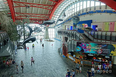 Photograph - The Entrance Hall To The National Marine Biology Museum by Yali Shi
