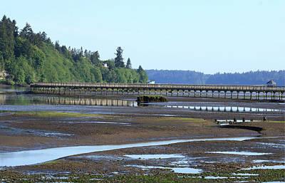 Photograph - The Estuary Boardwalk Trail by I'ina Van Lawick