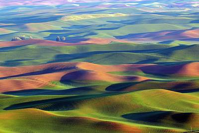 Photograph - The Ethereal Palouse 2 by Lynn Hopwood