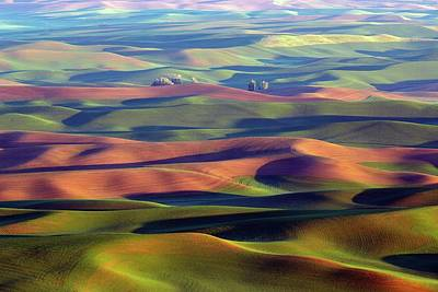 Photograph - The Ethereal Palouse by Lynn Hopwood