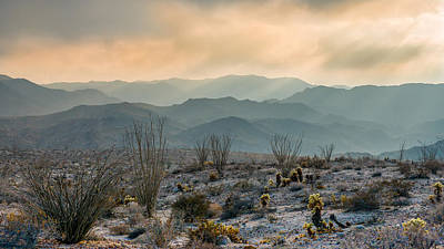 Anza Borrego Desert Photograph - The Exaltation Of Wilderness by Joseph Smith