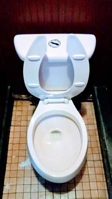 Photograph - The Exhibit The Public Commode Potty Unisex Male by Michael Hoard