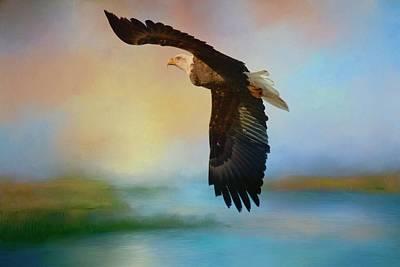 Photograph - The Eye Of The Eagle by Lynn Hopwood