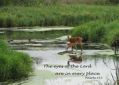 The Eyes Of The Lord Art Print