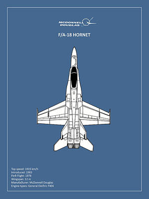 Hornets Photograph - The F-18 Hornet by Mark Rogan