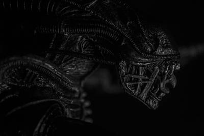 Xenomorph Photograph - The Face Of Fear by David Doyle