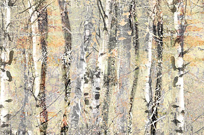 Photograph - The Fading Forest by Tara Turner