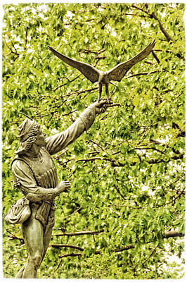 Photograph - The Falconer No 2 by Mike Martin