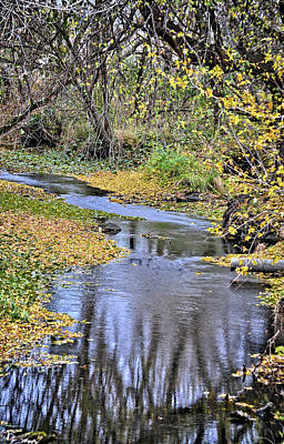 Photograph - The Fall by Bonfire Photography
