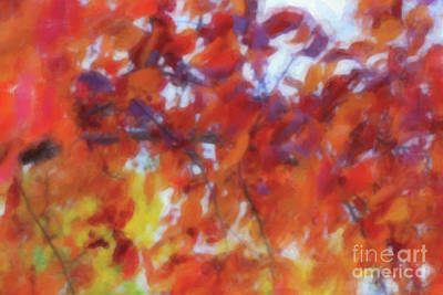 Digital Art - The Fall Branch Watercolor by Donna Munro