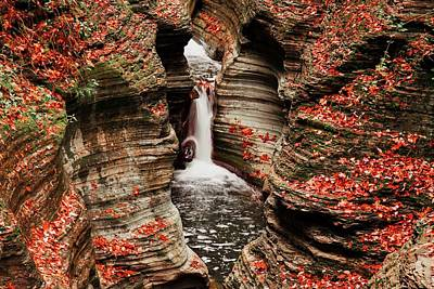 Photograph - The Fall Colours Of Watkins Glen  by Hany J