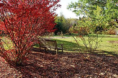 Photograph - The Fall Garden by Debbie Oppermann
