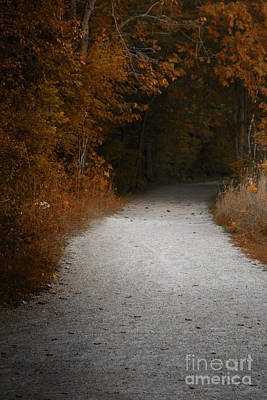 Photograph - The Fall Path by Margie Hurwich