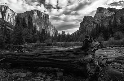 Photograph - The Fallen Bw by Jonathan Nguyen