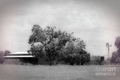 Photograph - the Family Farm by Ella Kaye Dickey