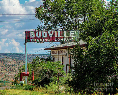 Photograph - The Famous Budville by Steve Whalen