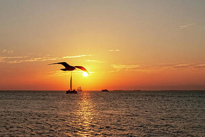 Mallory Square Key West Wall Art - Photograph - The Famous Key West Sunset  by Kay Brewer