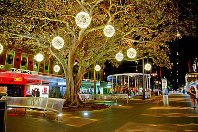 Photograph - The Famous Manly Corso At Christmas by Miroslava Jurcik