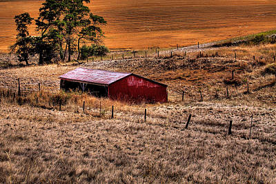 Wheat Field Photograph - The Farm by David Patterson