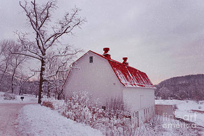 Photograph - The Farm In Snow by Rima Biswas