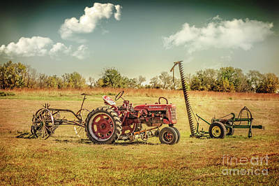 Photograph - The Farm Team by John Anderson
