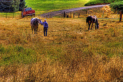 Photograph - The Farmers Friend by David Patterson