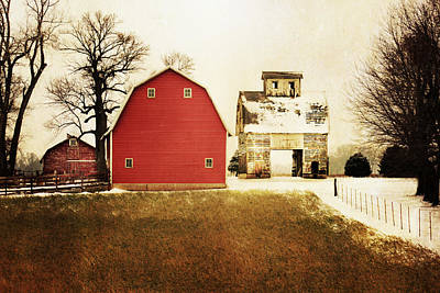 Corn Crib Photograph - The Favorite by Julie Hamilton
