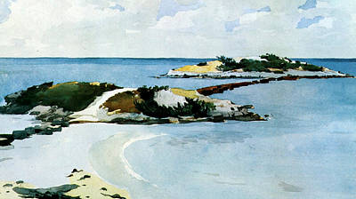 Beach Landscape Drawing - The Favorite by Winslow Homer