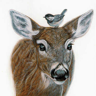 Whitetail Fawn Painting - The Feathered Hat by Ruth Hopper