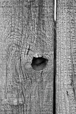 The Fence That Sleeps Art Print by Douglas Barnett