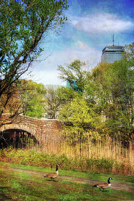 Photograph - The Fens - Boston by Joann Vitali