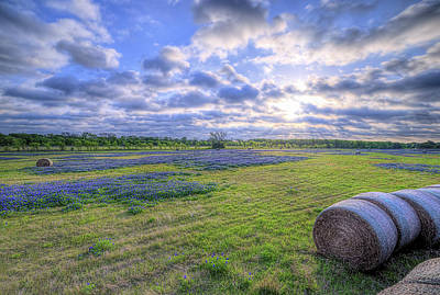 Photograph - The Field Of Dreams In Ennis Texas by JC Findley