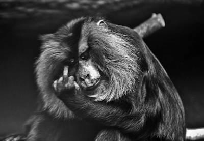 Photograph - The Finger by John Haldane