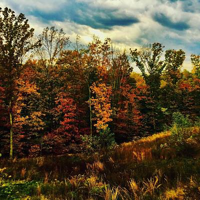 Photograph - The First Days Of Fall by Jennifer Brande