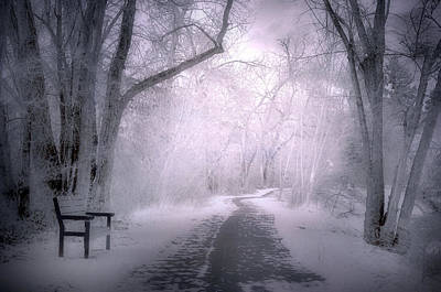 Photograph - The First Snow Of December by Tara Turner