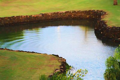 The Fish Pond Original