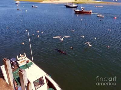 Photograph - The Fishing Docks by Donna Cavanaugh