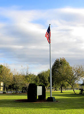 Photograph - The Flag Pole In The Park  by Chris Mercer