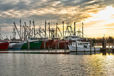 Photograph - The Fleet At Viking Village by Kristia Adams