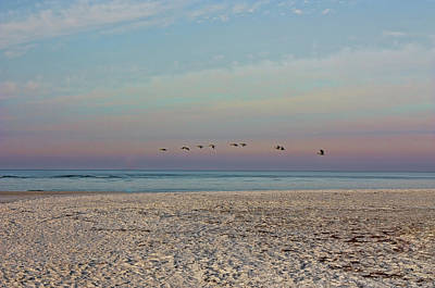 Photograph - The Flight Of Nine by HH Photography of Florida