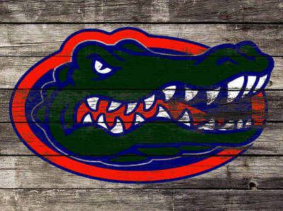 The Hills Mixed Media - The Florida Gators 3a by Brian Reaves