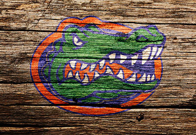 Tim Tebow Mixed Media - The Florida Gators by Brian Reaves