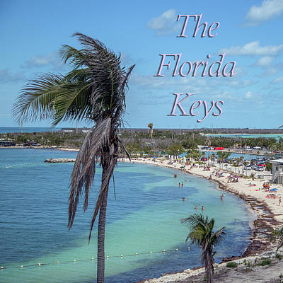 Featured Tapestry Designs - The Florida Keys Gallery Icon by Betsy Knapp