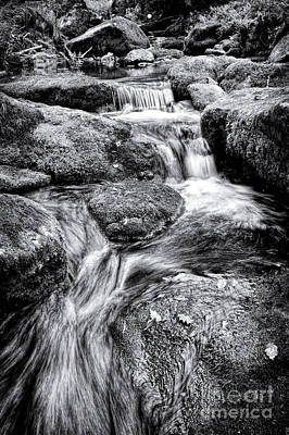 Photograph - The Flow by Tim Gainey
